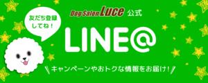 Dod Salon Luce公式LINE@